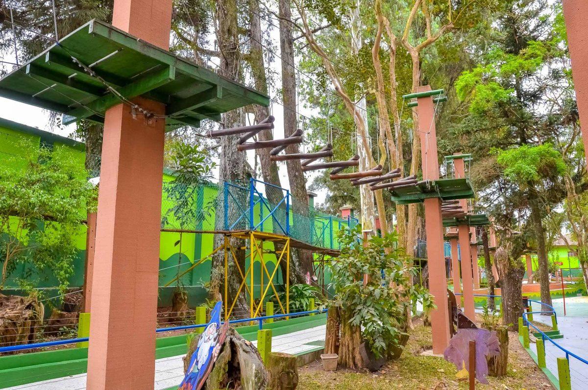 Guia de férias para crianças em Curitiba